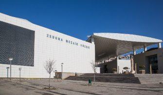 Gaziantep Zeugma Mozaik Müzesi Selcuk