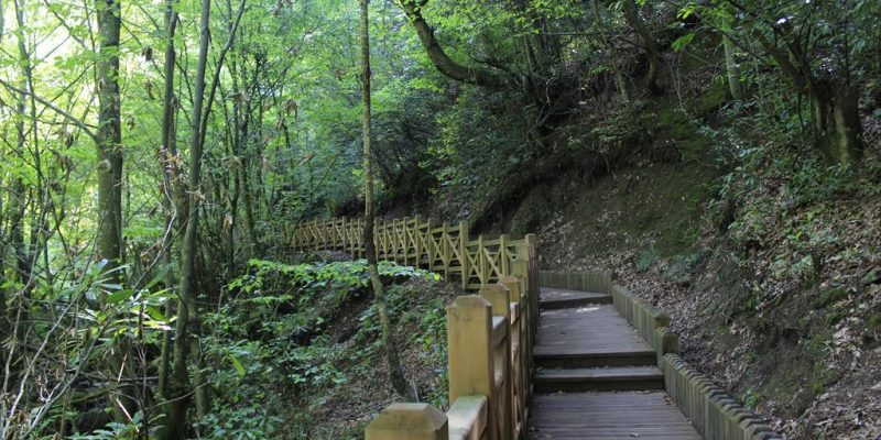 Düzce Aydınpınar Şelaleleri Tabiat Parkı 2