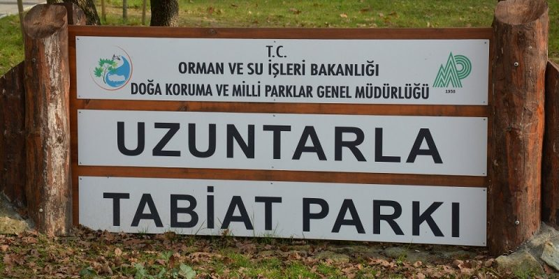 Kocaeli Kartepe Uzuntarla Tabiat Parkı Ormanya (1)