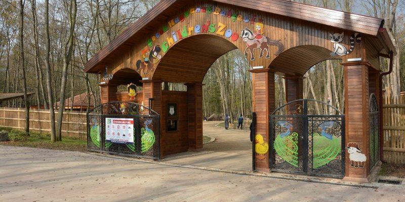 Kocaeli Kartepe Uzuntarla Tabiat Parkı Ormanya (24)